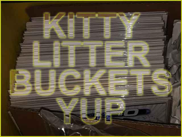 kittylbs